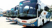 Bus PO Bimo Transport