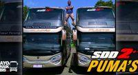 Bus Terbaru Putera Mulya