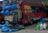 Bus Sulawesi