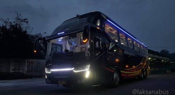 Bus Terbaru Bejeu