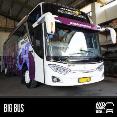 Big Bus Bregodo