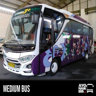 Medium Bus Bregodo