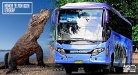 Bus Wisata Komodo Bali