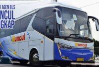 Agen bus Muncul