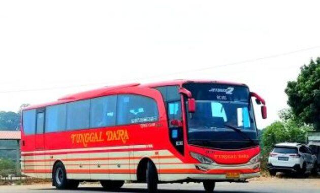 Bus Tunggal Dara