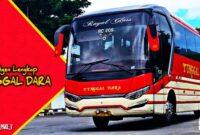 Kontak Agen bus Tunggal Dara