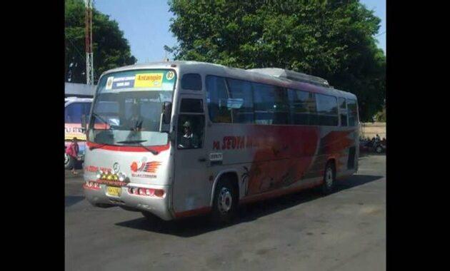 Bus Galaxy Coach Sedya Mulya