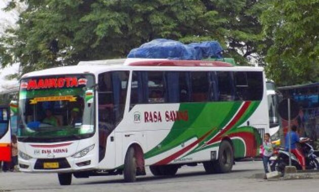Bus Ecoliner RS