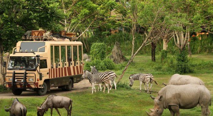 Bali Safari & Marine Park Pariwisata Pulau dewata